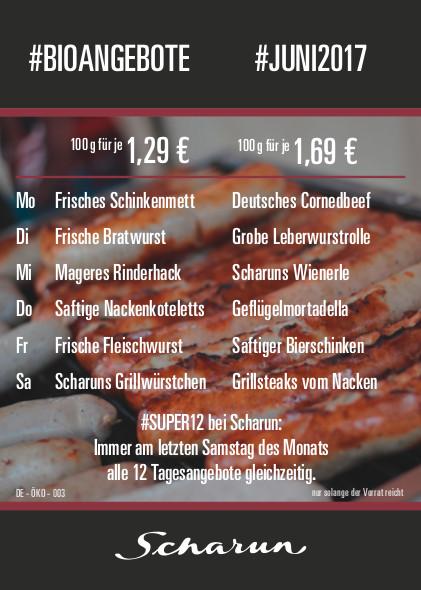 2016.06_Scharun-Angebotsflyer