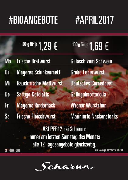 2017.04_Scharun-Angebotsflyer