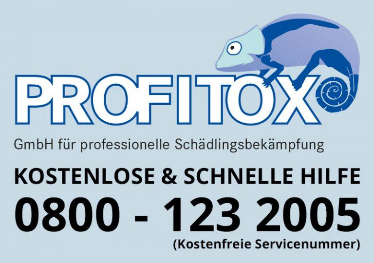 Profitox – Schädlingsbekämpfung