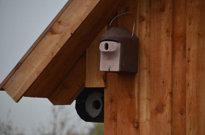 Vögel, Vogelschutz, Nistkästen, Vogelhaus (1)